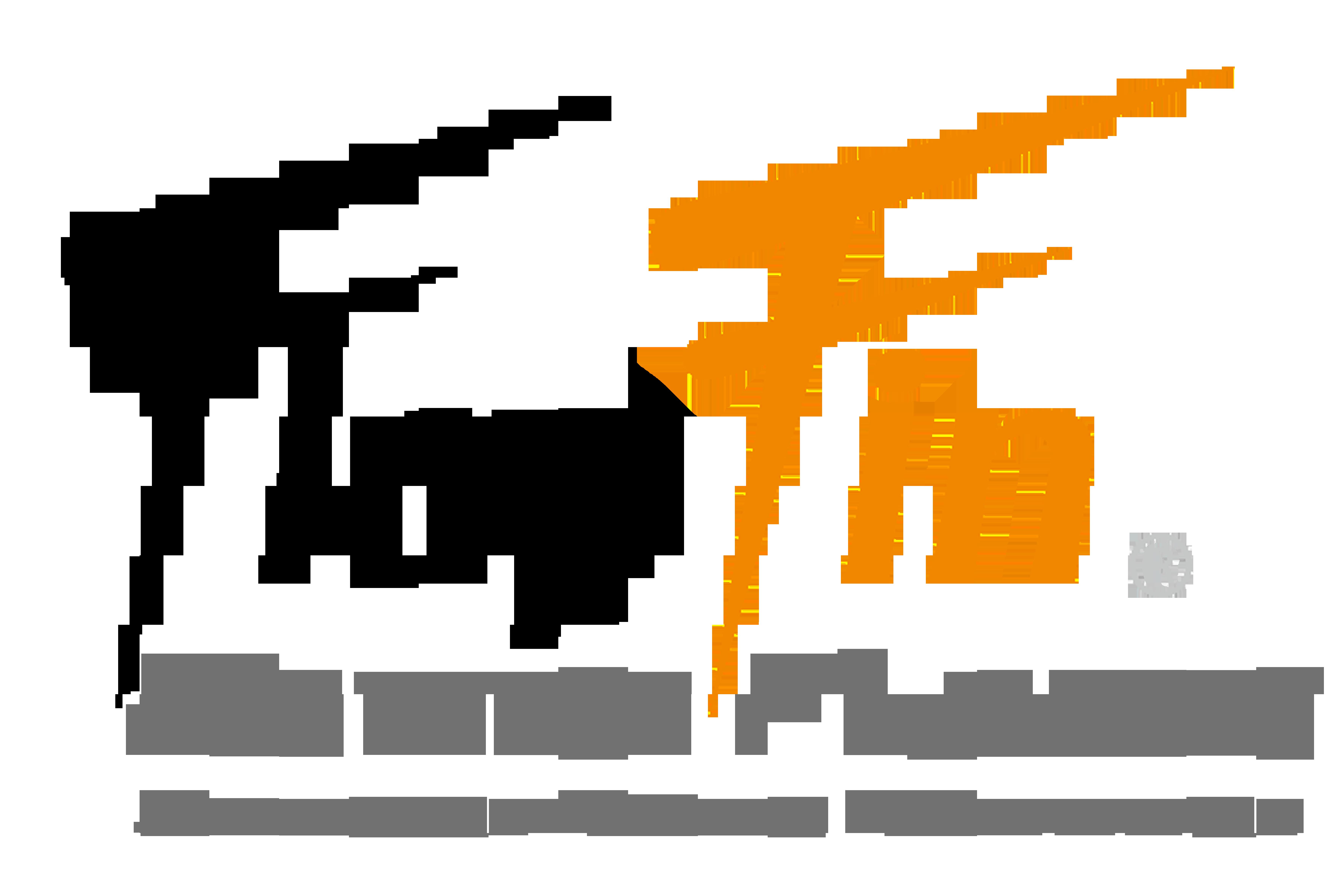 FlapFin